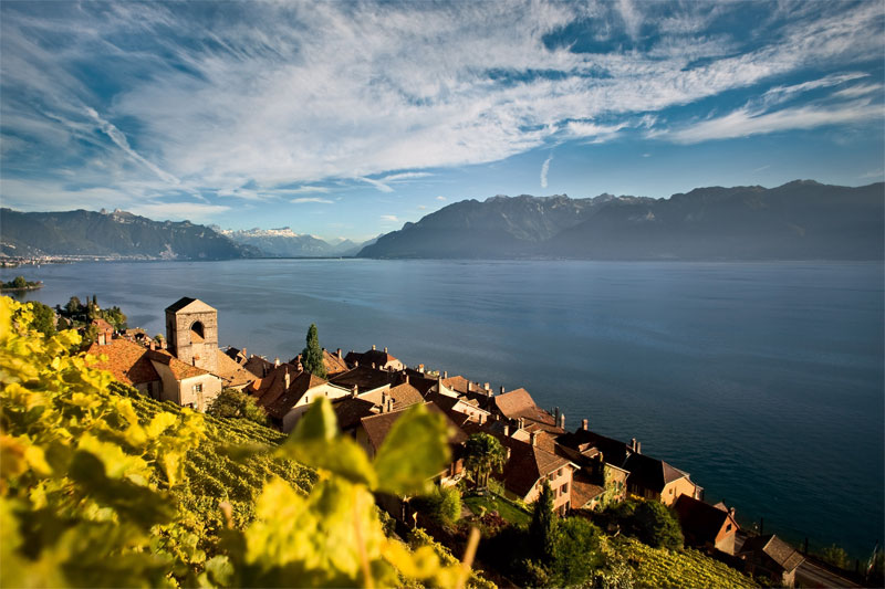 Lavaux, on Lake Geneva