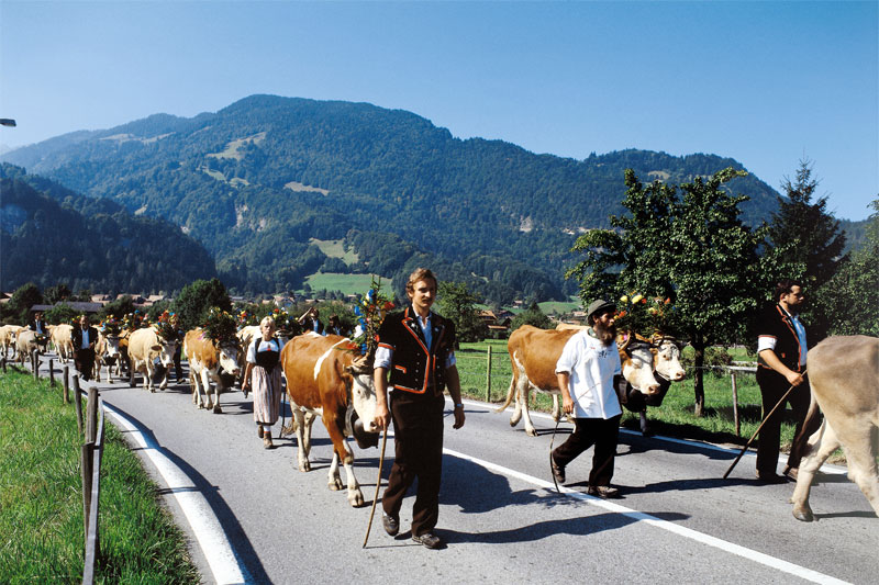 Traditional alpine procession in Wilderswil