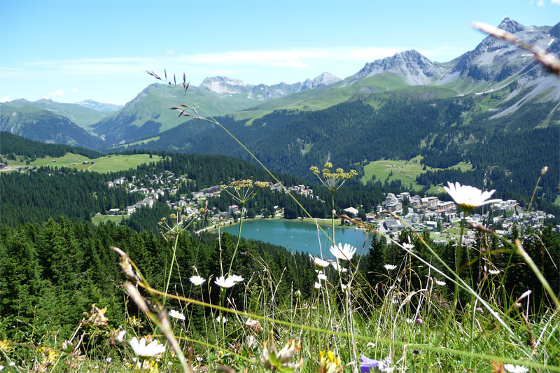 view over Obersee Arosa