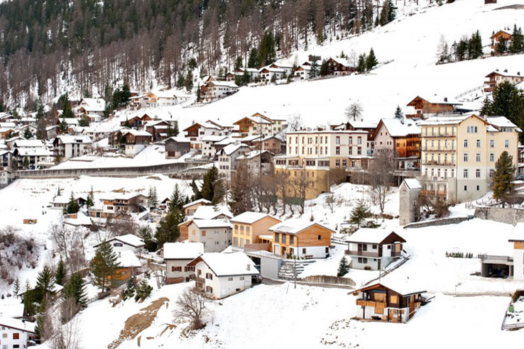 Wiesen in winter