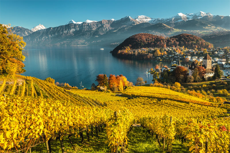 Autumn view of Spiez