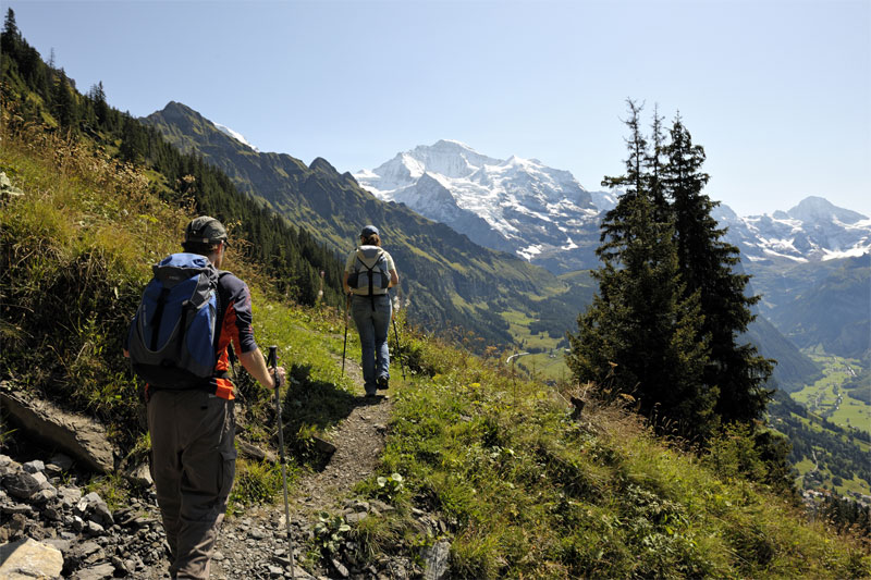 Walking near Wengen