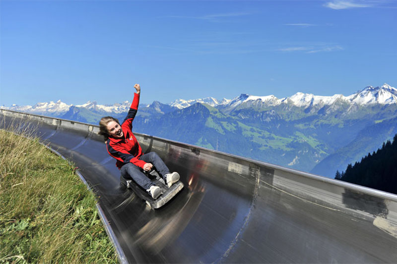 Summer toboggan run on Pilatus