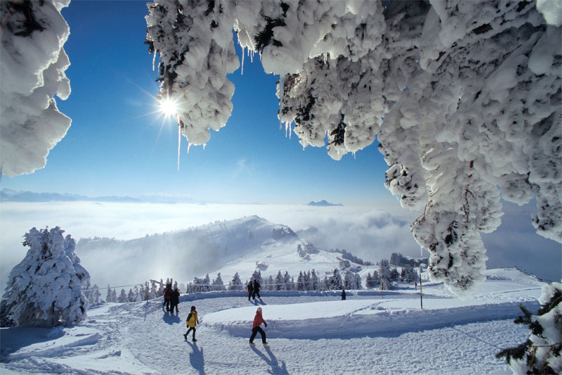 Winter on Mount Rigi