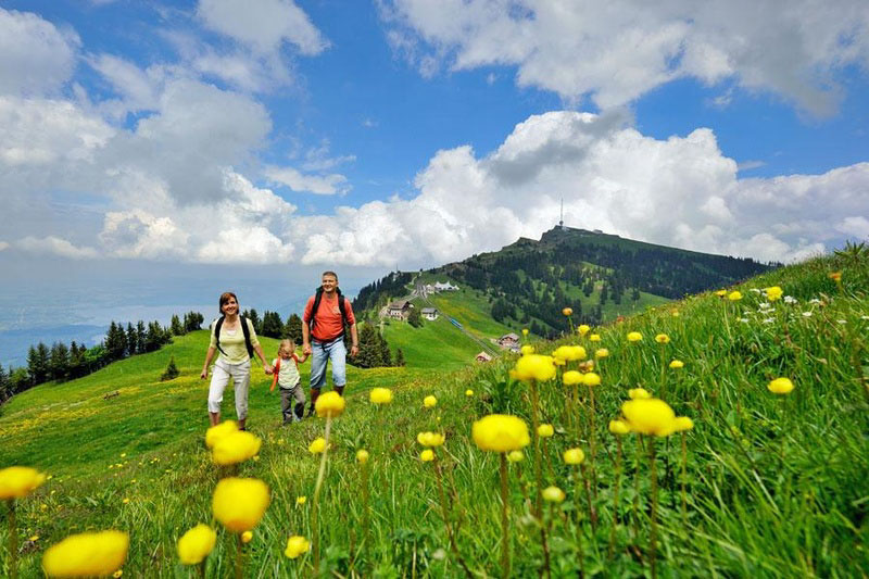 Summer view of Mount Rigi