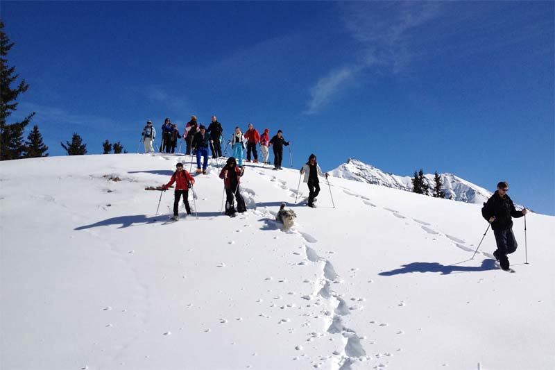 Try snowshoeing during your stay