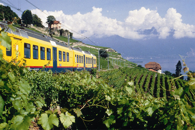 Wine train in Lavaux