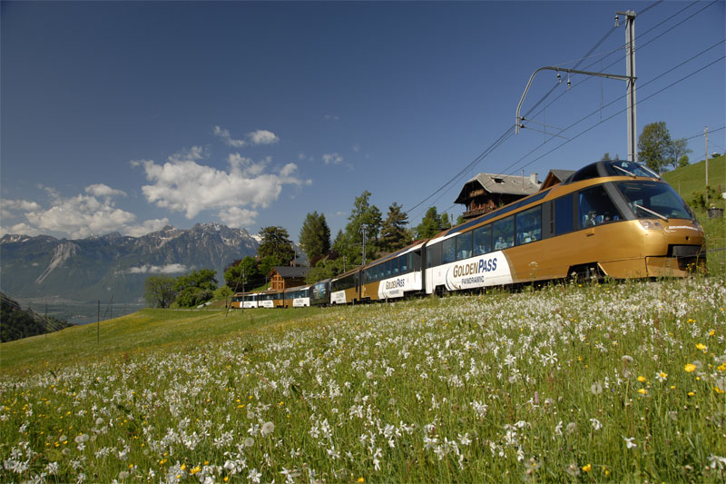 Panoramic carriages of the GoldenPass Line
