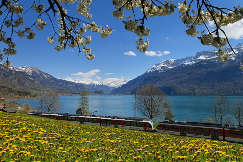 Luzern-Interlaken Express beside Lake Brienz